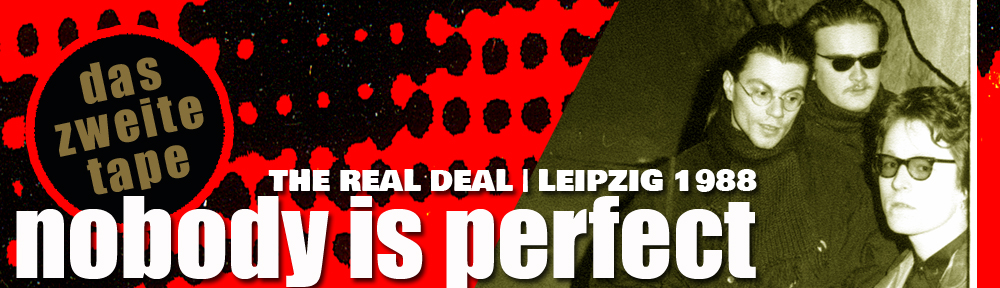 The Real Deal Header Nobody's Perfect